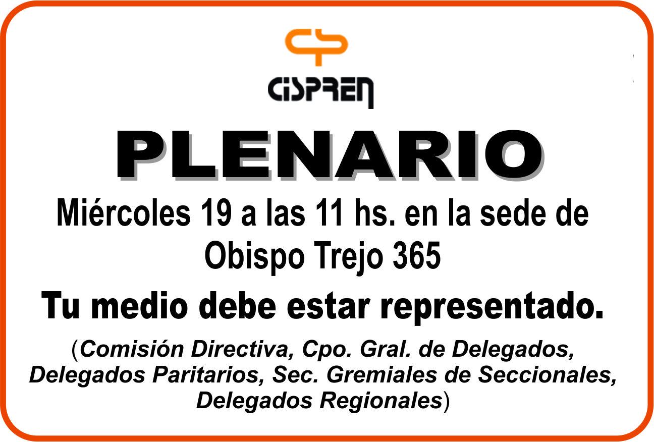 Plenario 19n