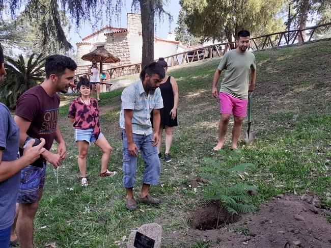 plantado arbol